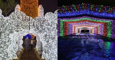 Houston, the Most Wonderful Time of the Year for Galaxy Lights is Here!